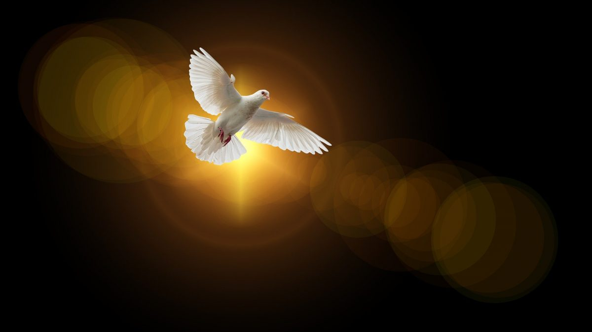 He Will Send Them Another Advocate Another Protector Another Defender The Holy Spirit Sts Joseph Paul Catholic Church