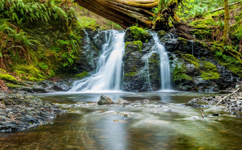 Love is a Stream That Flows from God